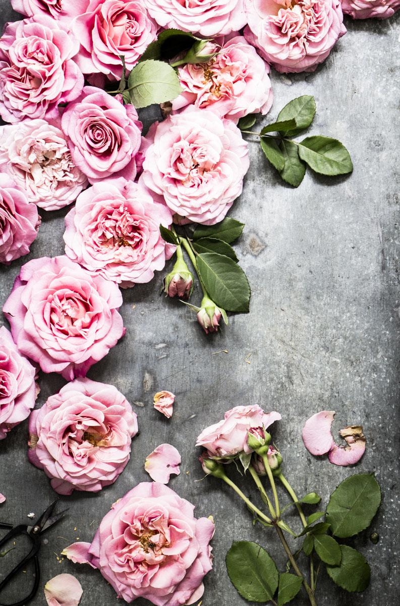Mit Rosenblütensirup das ganze Jahr den Sommer genießen. IIn hübsche Glasflaschen gefüllt, ist es auch ein schönes Mitbringsel oder Geschenk zum Valentins- oder Muttertag