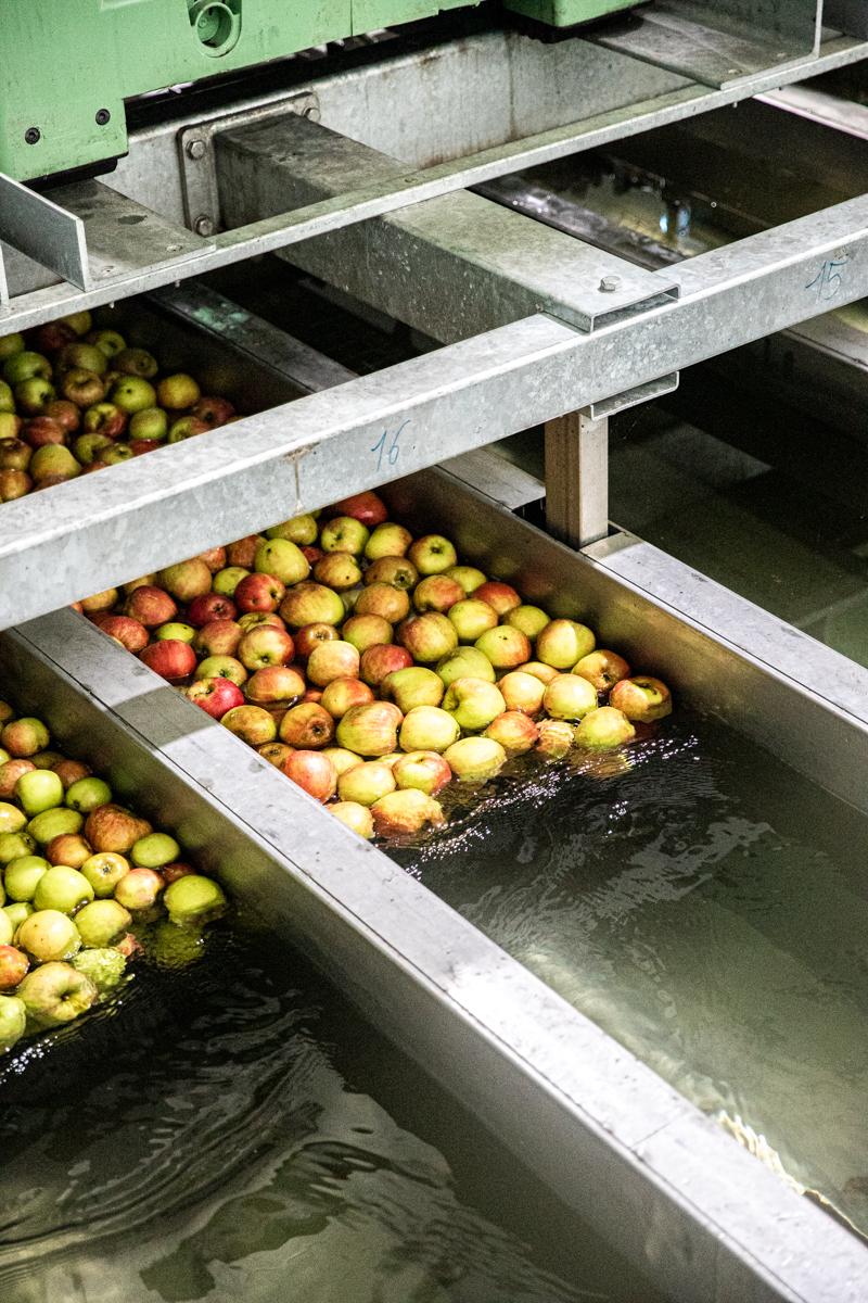 Saftige Apfelzimtschnecken - einfach und extrem lecker! #klassiker #hefeteig #blätterteig #schnell #rezept #blechkuchen
